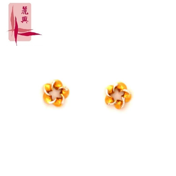 18K Yellow/White Gold Earrings 3YM01730